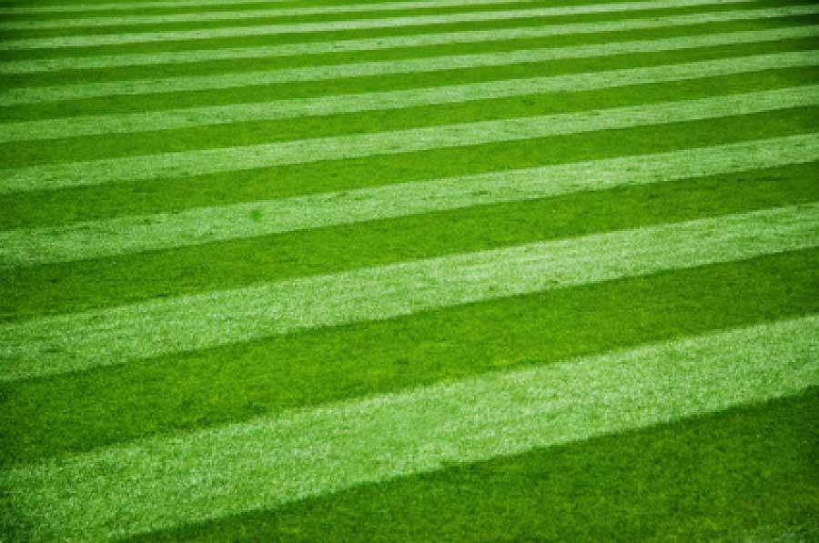 tappeto erboso realizzato da paradello