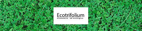 tappeto erboso per parchi Ecotrifolium