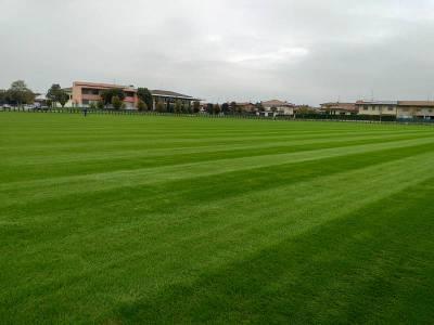 BSFC training center