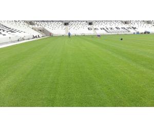 tappeto erboso per stadio Besiktas
