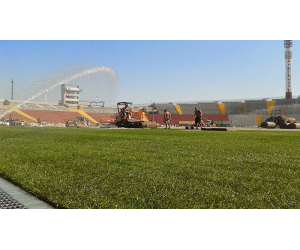 tappeto erboso campo udinese calcio